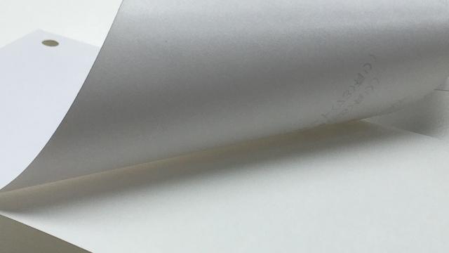 剥離紙 白